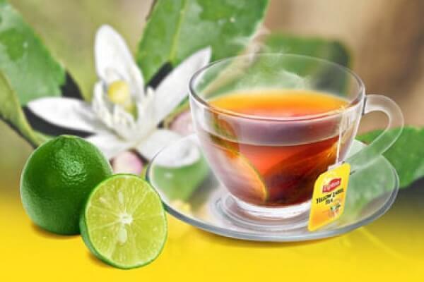cách pha trà lipton cam sữa siêu ngon